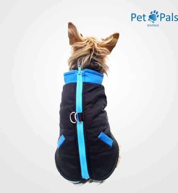 Chaleco deportivo dog sport azul
