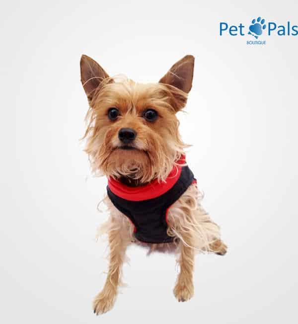 Chaleco Deportivo Pet Pals Boutique color rojo