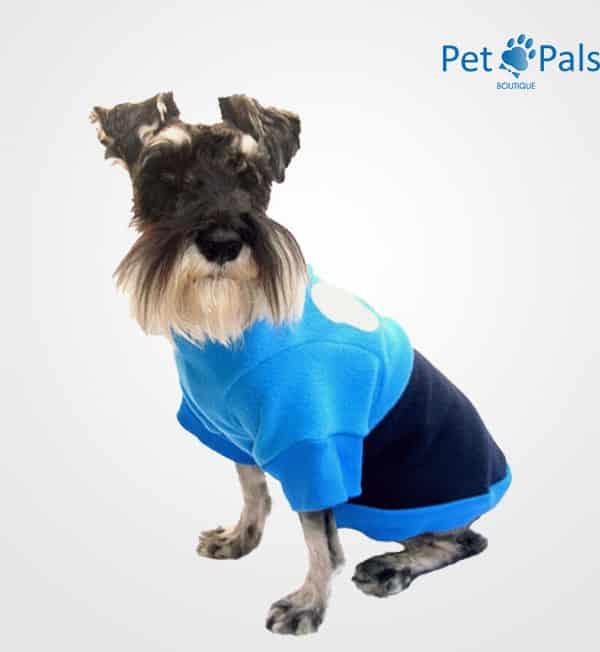 Suéter azul para perro