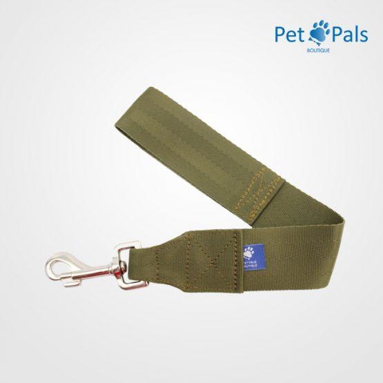 cinturon_seguridad (2)
