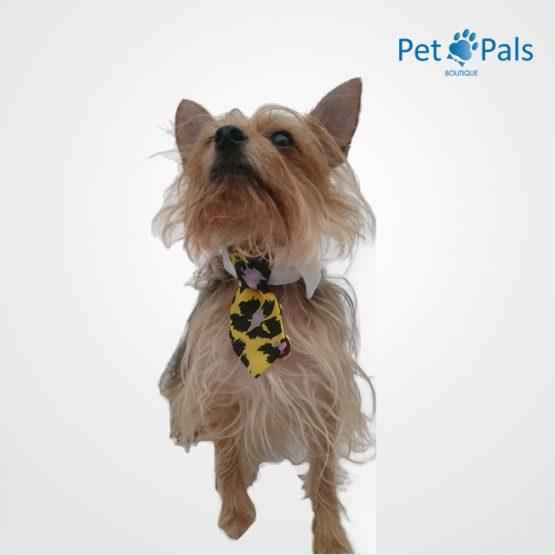 corbata fun amarilla (1)