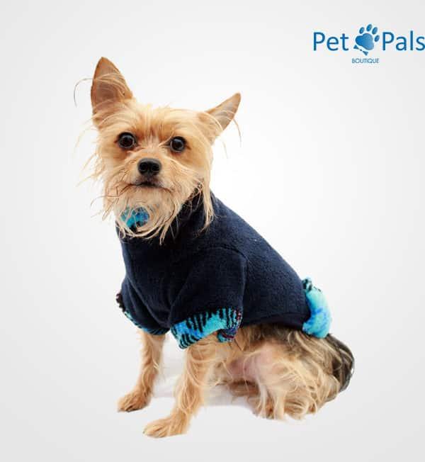 Suéter para perro cariño azul frente
