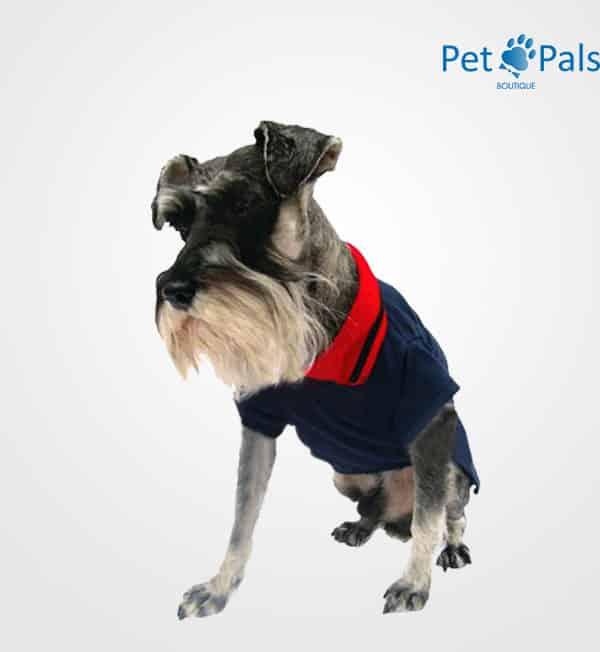 Playera Polo Clásica para perro