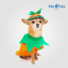 Disfraz de calabaza para perro