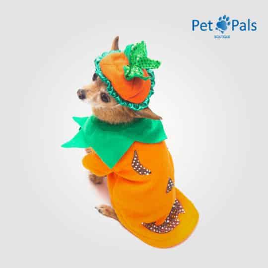 Disfraz de calabaza para perro espalda