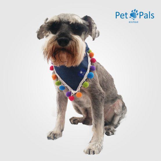perry palicate pet pals