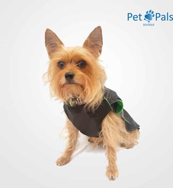 Raincoat negro impermeable para perro frente