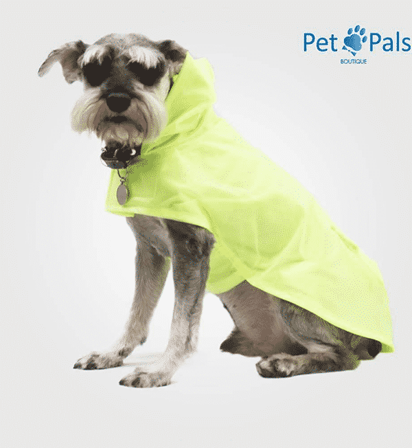 Rainy coat impermeable para perro