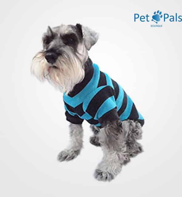 Suéter tejido azul para perro