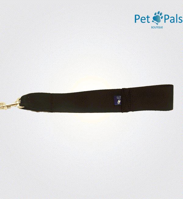 Cinturón de seguridad para perro
