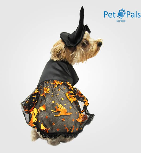 Disfraz de bruja para perro classic