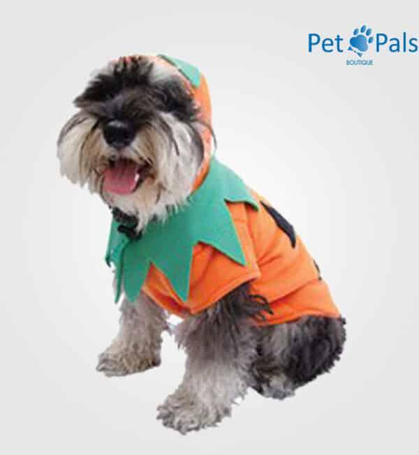 Disfraz para perro de calabaza classic