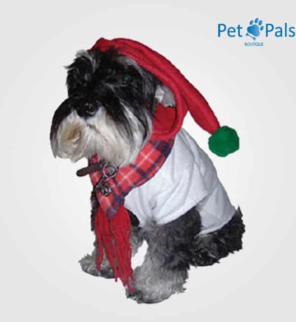 Disfraz de muñeco de nieve para perro